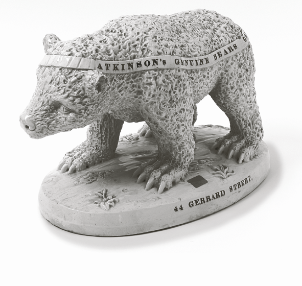 The Atkinson's Bear